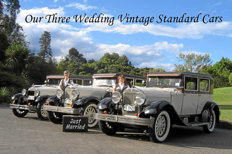 Prices of vintage wedding cars and bridal cars for hire our cars are magnificent and our rates are competitive junglespirit Gallery